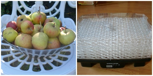 dried.apple