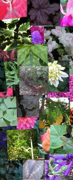 poem.collage